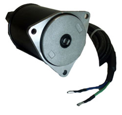 Power T/T Motor, 12V, OMC