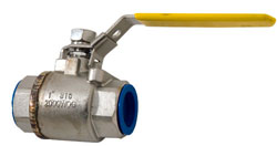 "1"" NPT Stainless Steel Water Shut-Off Valve"