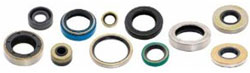 Drive Shaft Bearing Retainer Lower Seal OMC
