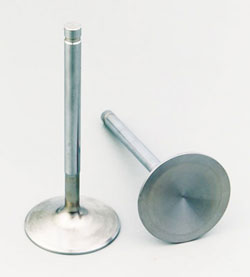 Stainless Steel Intake Valves