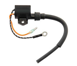 Ignition Coil Mercury 823033
