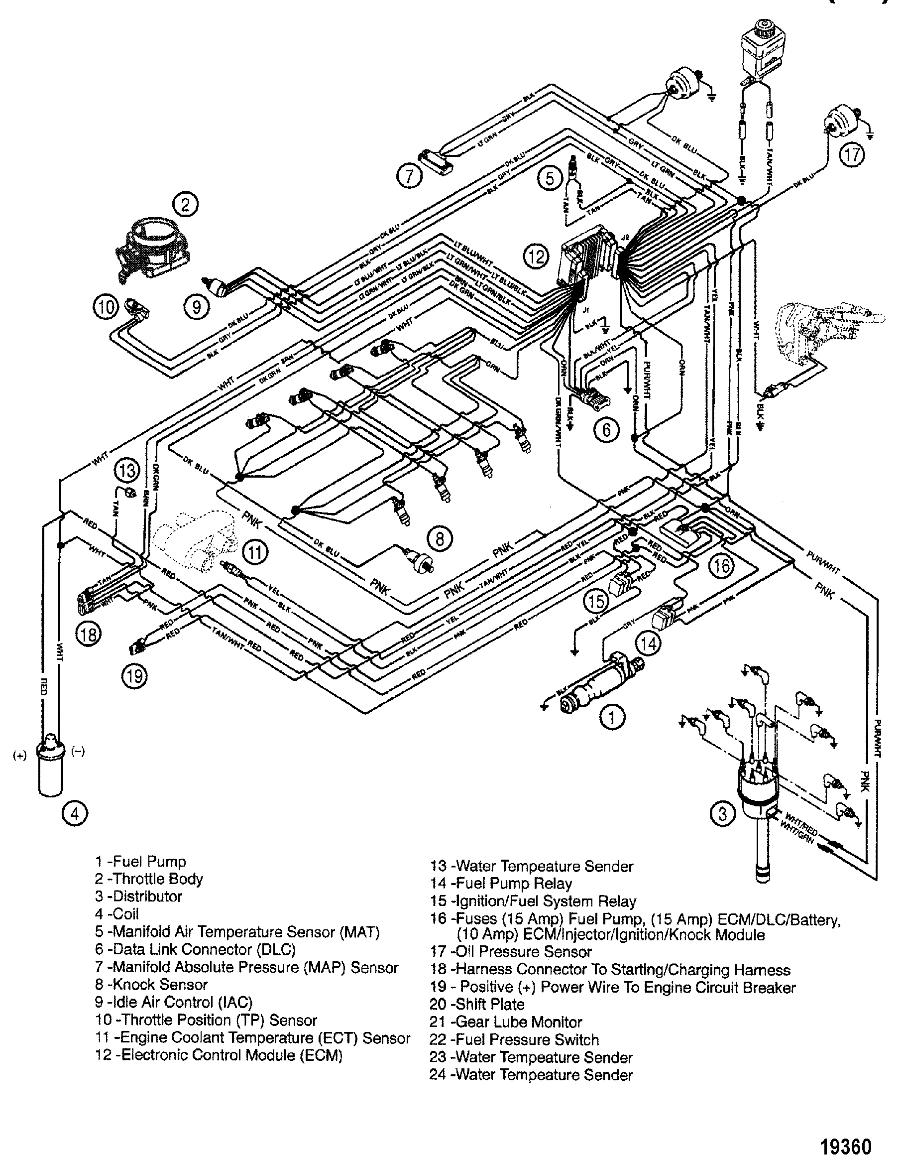 Fuel Pump Wiring Harness Hardin Marine Efi Section Drawing Hover Or Click To View Larger